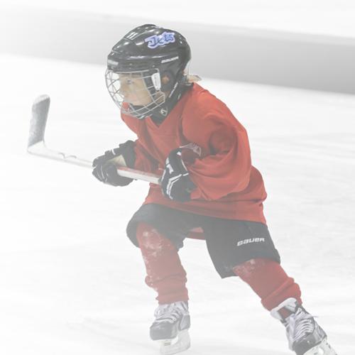 novice half ice program